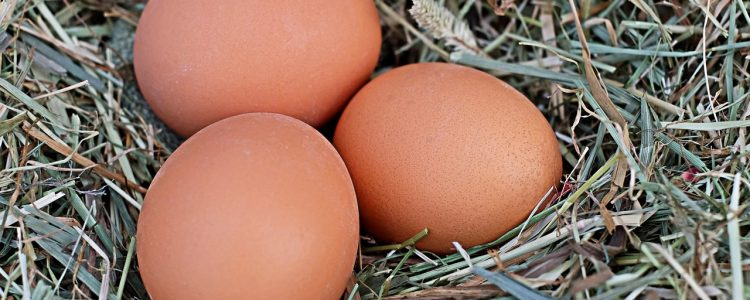A little known benefit of eggs